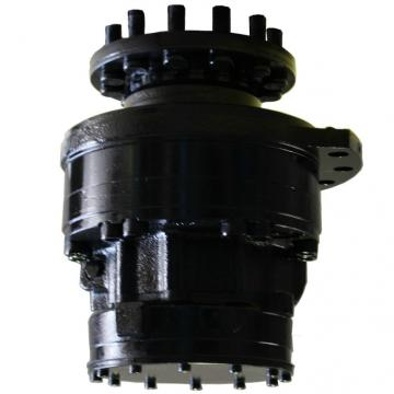 Caterpillar 262 1-Spd Reman Hydraulic Final Drive Motor